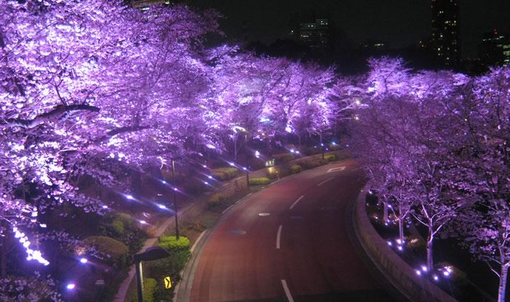 東京大型複合施設